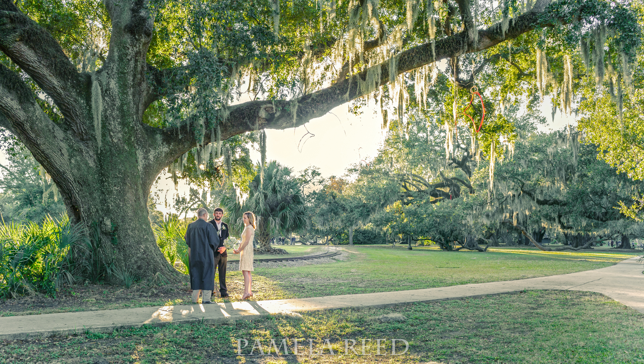 Weddings At City Parks In New Orleans